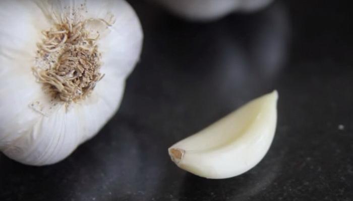 golovka i zubchik chesnoka