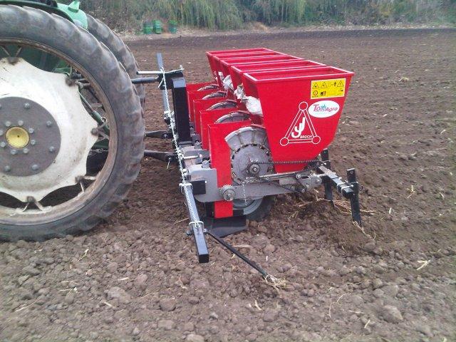 Planting Garlic Terms Scheme Mechanization Ukrup Ukrainian