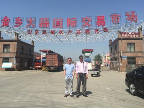 Вход на международный рынок чеснока в Цзиньсяне