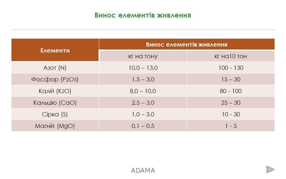 normy-vynosa-chesnokom-elementov-pitaniya-iz-pochvy