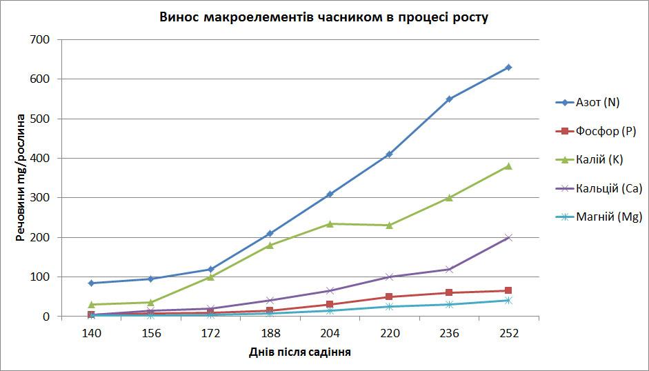 график выноса макроэлементов чесноком для определения как провильно вносить удобрение для чеснока