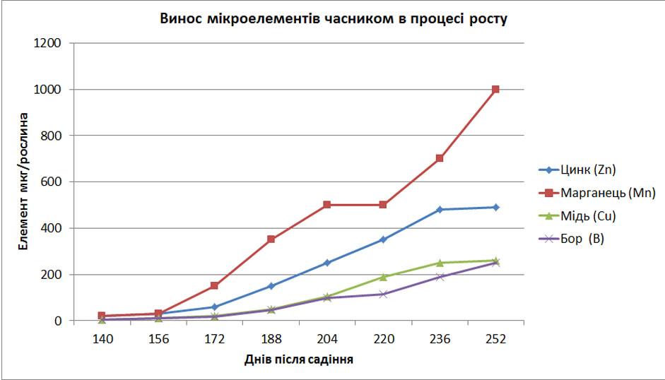график выноса микроэлементом чесноком для определения как провильно вносить удобрение для чеснока