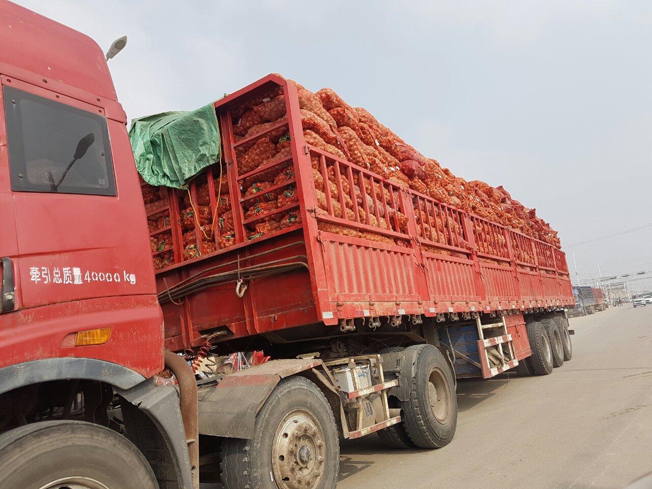 грузовик с чесноком едет на китайский рынок чеснока в Китае, Шандунь, Цзиньсян