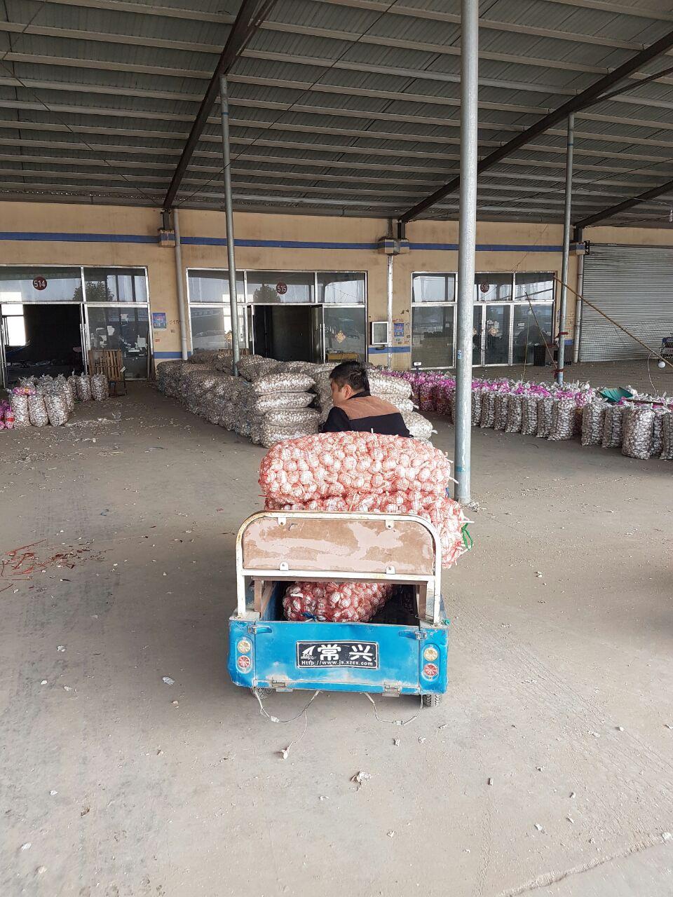 китаец на мотоблоке везет чеснок на рынок в Китае