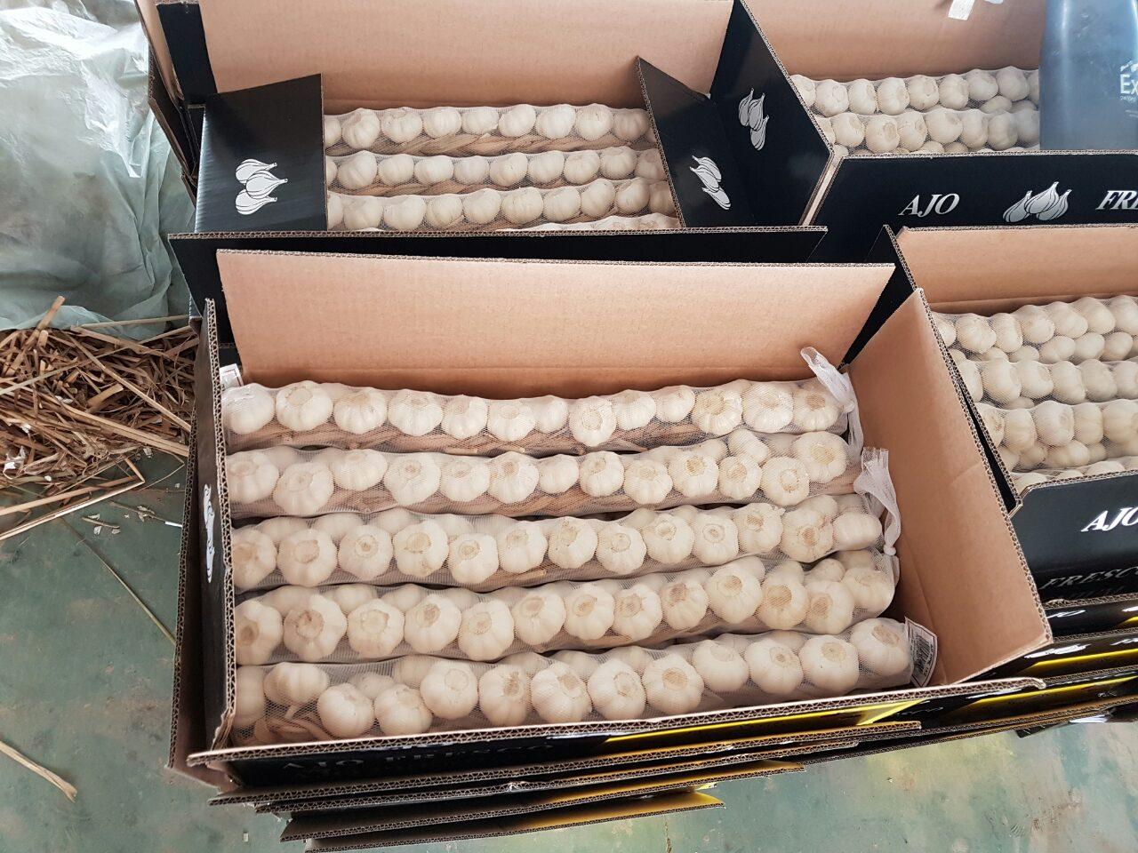 чеснок заплетенный косичками в картонном ящике