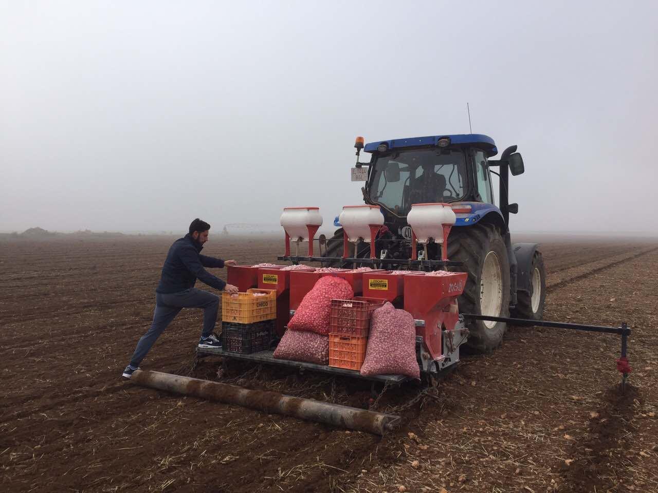 Сажалка для чеснока испанской фирмы Zocapi, идет посадка чеснока