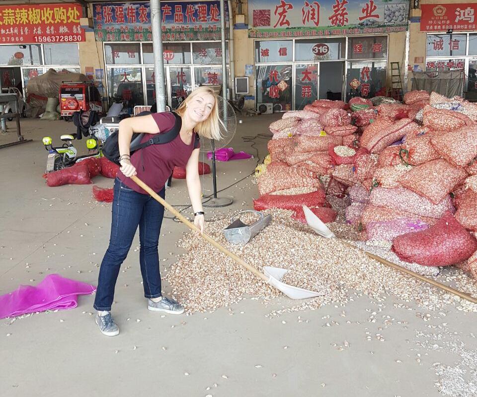 чеснок в сетках и навалом под навесом на чесночном рынке в Киате